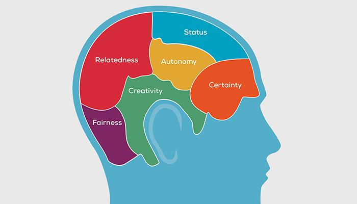 neurology-700x400